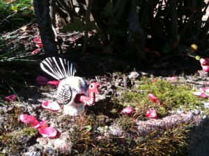 The Impossible Turkey likes walking gardens.