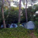 Protest Tents